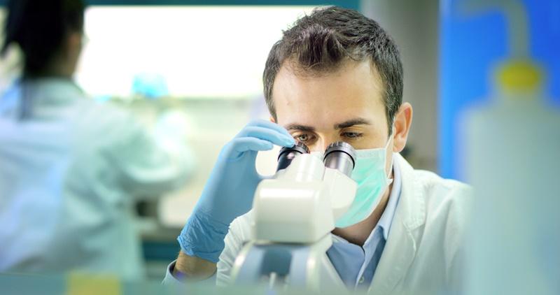 Proyectos UST se adjudican fondos externos de investigación