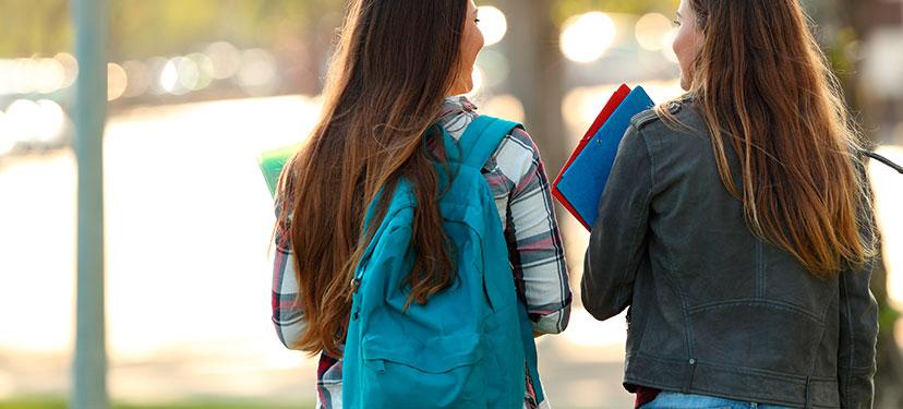 El proceso de individuación en estudiantes de educación superior: trayectorias vitales, identidades sociales y agencia de las protagonistas de movilizaciones feministas de los últimos 5 años en la Región Metropolitana